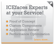 ICEfaces Professional Services